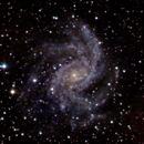 NGC 6946,                                Günther Eder