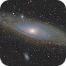"M31 ""The Andromeda Galaxy"",                                  Peter Webster"