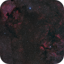 Cygnus Mosaic,                                Eric Cauble