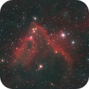 SH2-278,                                Anne-Maree McComb