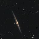 The Needle Galaxy , NGC4565,                                jon nicholls
