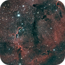 IC 1396 Elephant Trunk,                                Alan Brunelle
