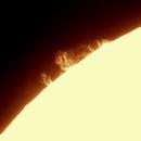 Sun prominence,                                Jonas Aliotti Jr