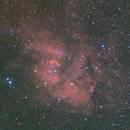 Sh2-132, Lion Nebula,                                Kathy Walker