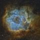 Rosette Nebula,                                Pete