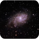 Messier 33 or M33 or  Triangulum Galaxy ,                                Stephen Harris