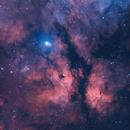 IC 1318 Butterfly Nebula in HOO,                                Douglas J Struble