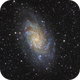 Messier 33 - Triangulum Galaxy,                                regis83