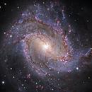 M83, Southern Pinwheel Galaxy (close-up),                                  Ruben Barbosa
