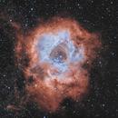 Rosette Nebula No. XXX,                                Michael Völker