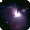 M42 Orion Nebula in LRGB,                                  Michael Juliano