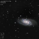 NGC2903,                                  Blackstar60