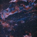 NGC 6960 & NGC 6992 Veil Nebula in HOO,                                Douglas J Struble