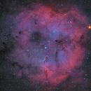 IC -1396, Elephant's Trunk Nebula,                                1074j