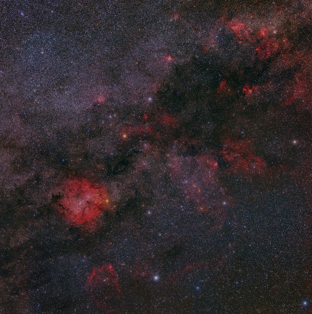Cepheus- Flying Bat to Lobster Claw,                                Nico Carver