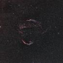 Cygnus loop,                                Marie