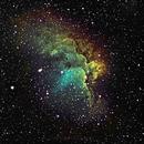 Flying Horse Nebula,                                David N Kidd