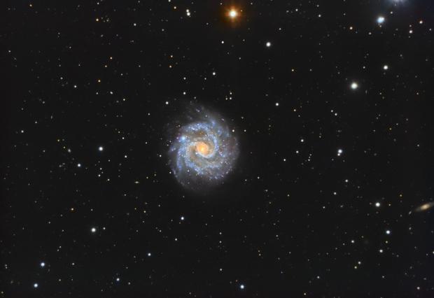 Ngc 3184- the little pinwheel,                                astromat89