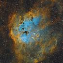 IC 410 Tadpole Nebula in Auriga,                    Alberto Pisabarro