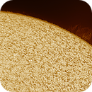 Solar chromosphere and prominence 20180128,                    Sergio Alessandrelli