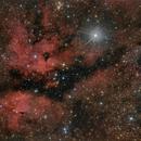 IC 1318, Cygnus,                                Frank
