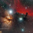 Horsehead Nebula,                                MRPryor
