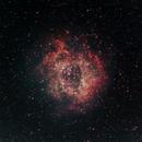 Rosette Nebula - NGC 2239,                                Mateus