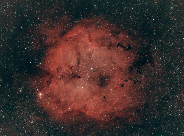 IC 1396,                                David Johnson