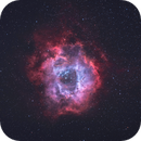 Rosette Nebula,                                Marcel Drechsler