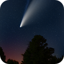 Comet Neowise,                                DSA101