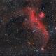IC 2177 - The Seagull Nebula,                                Okke_Dillen