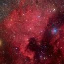 NGC7000,                                David Cheng