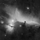The Horsehead Nebula - H-alpha mosaic,                                Rafael Schmall
