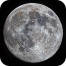 Almost-full Pink Moon,                                Shannon Calvert