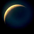 Moon,                                Whiskcat