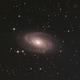 M82 M81 Skywatcher 130/650 PDS,                                Alex_Michels