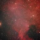 NGC 7000 North America Nebula,                                whitenerj