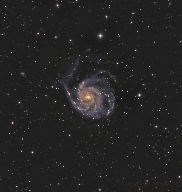 M101, pinwheel galaxy,                                Paul May