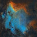 IC5070 - The Pelican,                                Prath Pavaskar
