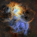 The Lion Nebula (Sh2-132),                                Jordan