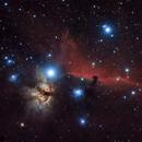 Flame and Horsehead Nebulae,                                Steve Sells