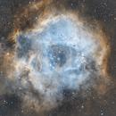 NGC 2244 - Rosette Nebula,                                Stephan Meyer