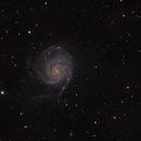 M101 Pinwheel Galaxy,                                Kristof Dierick