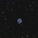 NGC 246 - The Skull Nebula,                                Terry Robison