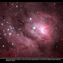 NGC6523 The Lagoon Nebula (center),                                Simon Bailey