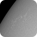 Active Region on the Sun in White Light,                                Chappel Astro