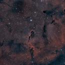 ic1396 (elephant trunk nebula) HOO_RGB,                                *philippe Gilberton