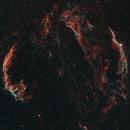Spacecat sneaks up to the Veil Nebula,                                Stephan Linhart