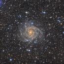 IC342 - The Hidden Galaxy,                                Frederick Steiling