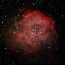 Rosetta nebula,                                Martin
